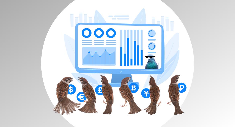 financial data scientist
