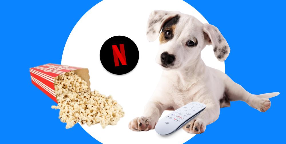 Netflix uses React