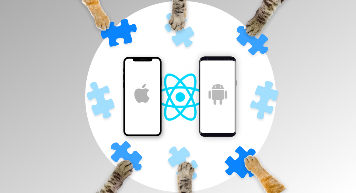 Popular React Native component libraries