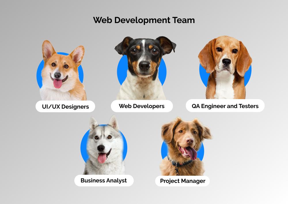 web development team structure