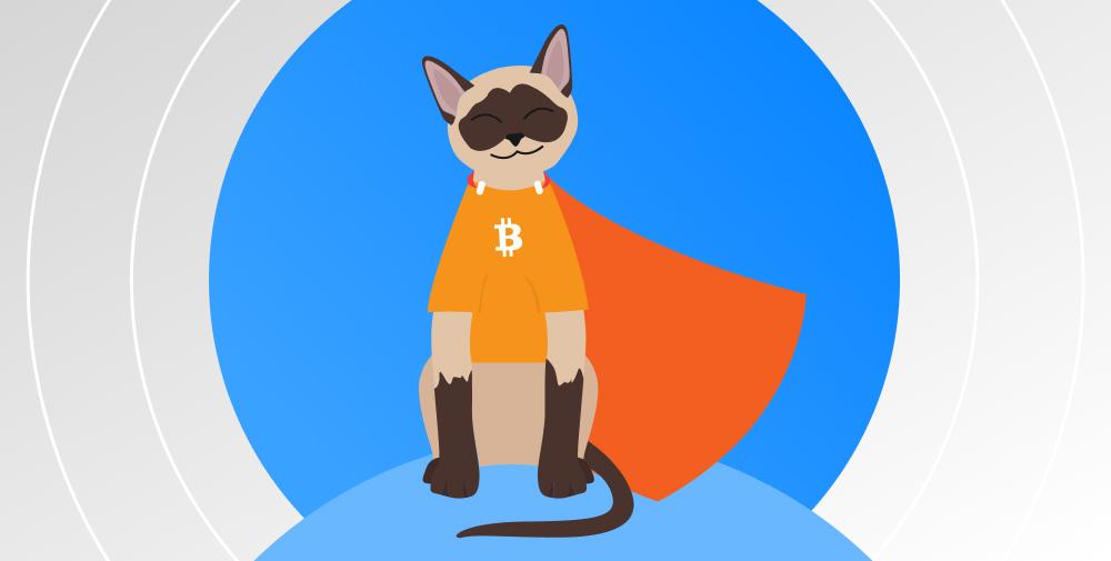 consortium blockchains